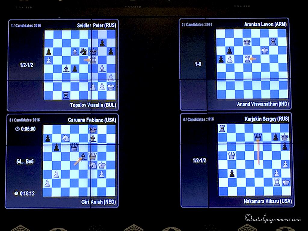 Шахматы. Вариант расклада игры