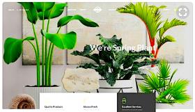 Красивый дизайн сайта или...
