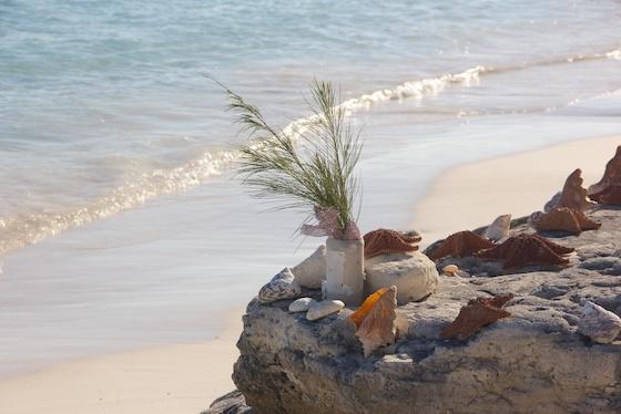 мои Багамы